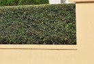 Belalie East Decorative fencing 30