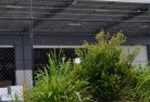 Belalie East Wire fencing 20